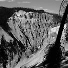Grand Canyon of Yellowstone by keith king