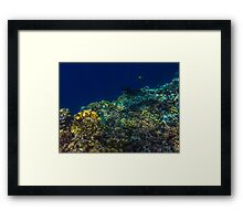 RABIGH - THE RED SEA Framed Print