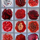 Art movement roses by hatefueled