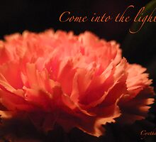 Come into the Light by courier