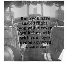 Da Vinci Flight Poster