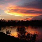 Colorful Sunset        by Wanda  Mascari