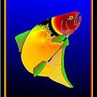 Sheila Fish by David Booth