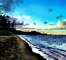 Hawaiian Beach  by davidburles