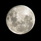 Full Moon by amygee