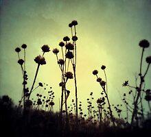 Walking Dead by Olivia Joy StClaire