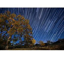 Startrails over Live Oak Photographic Print