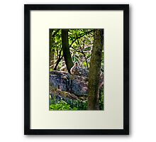 Sigh...One in every crowd Framed Print