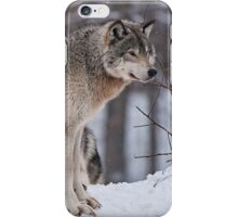 Site Seeing iPhone Case/Skin
