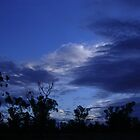 Narrabri Dawn by JulieMahony