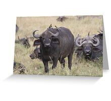 Three for the road. Greeting Card