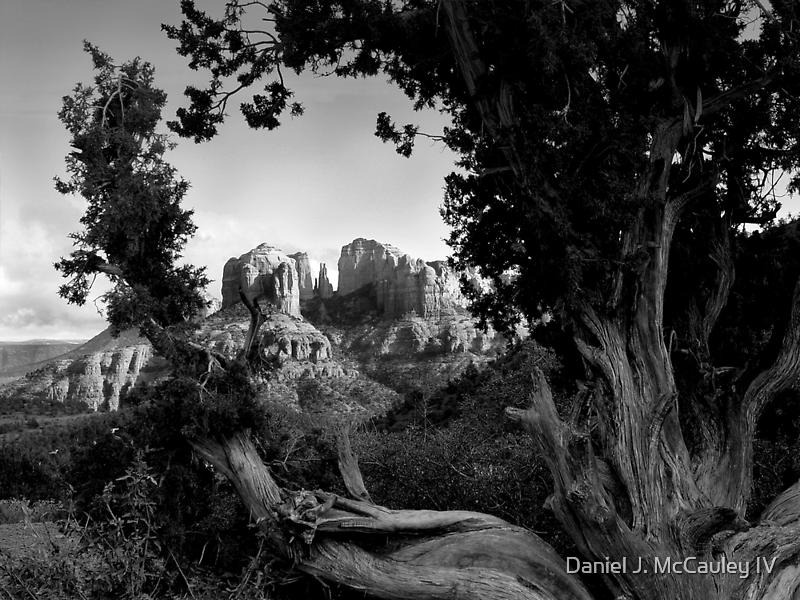 Sedona in Black & White by Daniel J. McCauley IV