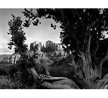 Sedona in Black & White Photographic Print