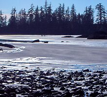 Beach at Tofino by LiTaoRen