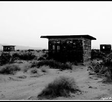 Mojave Desert by cmcmillin77