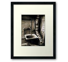 D3Cay 1 Framed Print