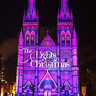 The Lights Of Christmas 2014 by Michael Matthews