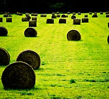 Fall Bales by prairielight