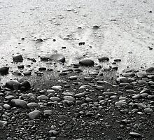 Black Pebble Beach by Robin Fortin IPA