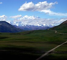 The Road to Mt Denali, AK by marcantony