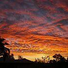 Lava Sky by Danika & Scott Bennett-McLeish