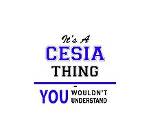 It's a CESIA thing, you wouldn't understand !! by yourname