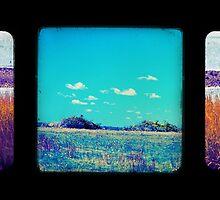 Hog Island Triptych by Diane L. Simoni