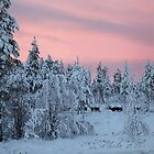 Winter sunrise in Lapland by Fran0723