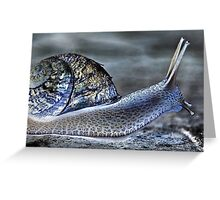 Snail's Pace Greeting Card