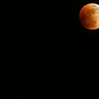 Lunar Eclipse with Saturn by William Carne