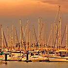 Harbour of Rota by anthonyguinness