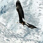 Flying Over the Mountains 2 by loriclint