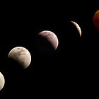 stages of the lunar eclipse by J.K. York