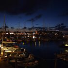 Key West Harbor At Dusk by Cayobo