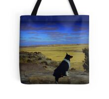 Kali at the Painted Desert Tote Bag