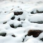 Rocky Winter by Paul Clarke