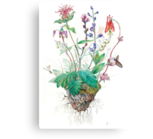 Wildlfowers Canvas Print