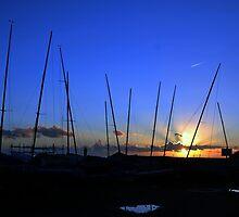 View Across Monmouth Beach, Lyme Dorset UK by lynn carter
