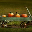 Autumn - Pumpkins - Free ride by Mike  Savad