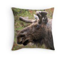 Moose up close Throw Pillow