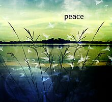 peace by Scott Mitchell