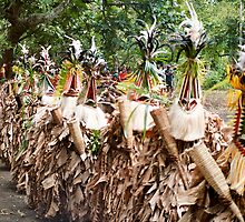 The Rom Dance, Ambrym, Vanuatu by Dave English