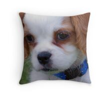 Rupert Throw Pillow