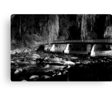 The River BW Canvas Print