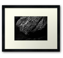 HDR Composite - Black and White Moss on Rock Framed Print