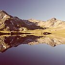 Lake Angelus Reflections by ardwork