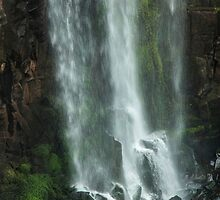 Iguazu Falls - The Long Drop by photograham