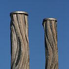 Newcastle Baths Poles by PPV247