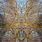 Tree Study 1 by CWerk