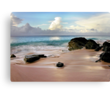 Silken Waters Canvas Print